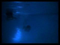 Underwater lesbian sex.