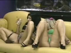 DreamCam -Catia Carvalho e Bruna Ferraz.