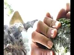 Lolita lupe fuentes comiendo verga y follando en el campo